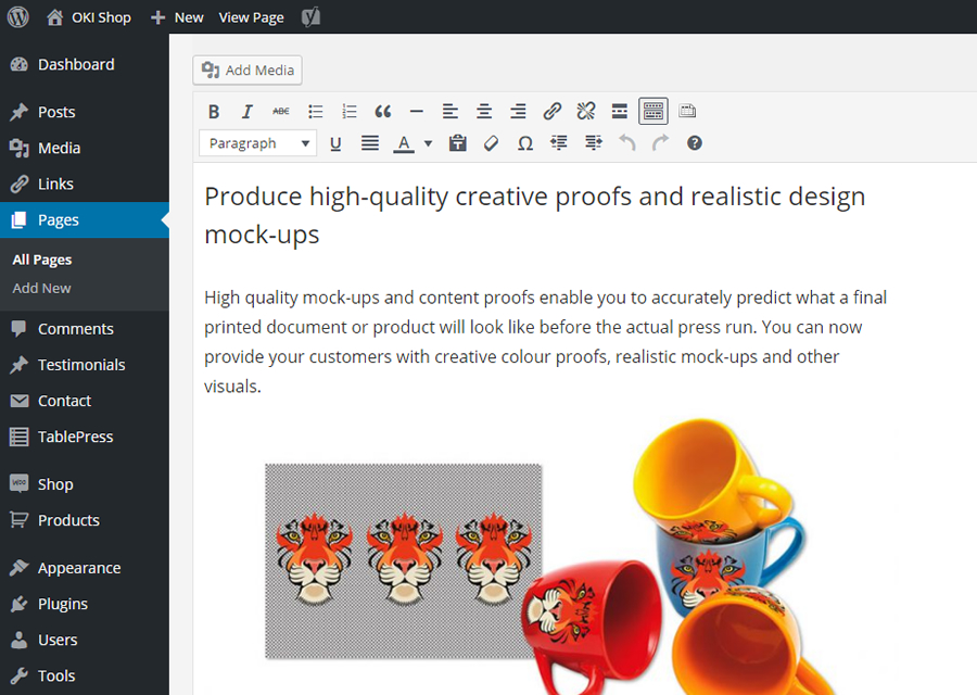 Editing page content in the OKI Shop website dashboard